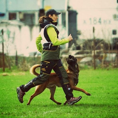 Costume sport canin «Habit sécurisant» noir et vert clair