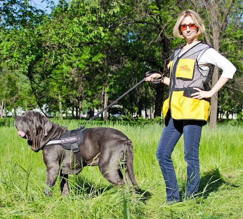 Veste légère de dressage chien «Entraînement en plein air