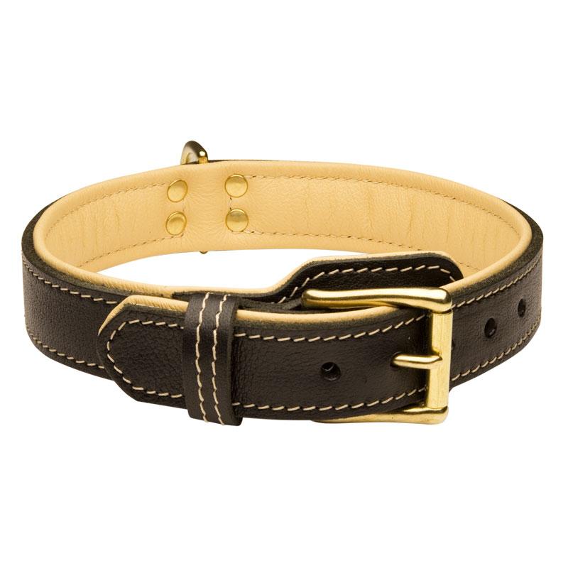 collier en cuir doubl pour chien cadeau royal c443. Black Bedroom Furniture Sets. Home Design Ideas