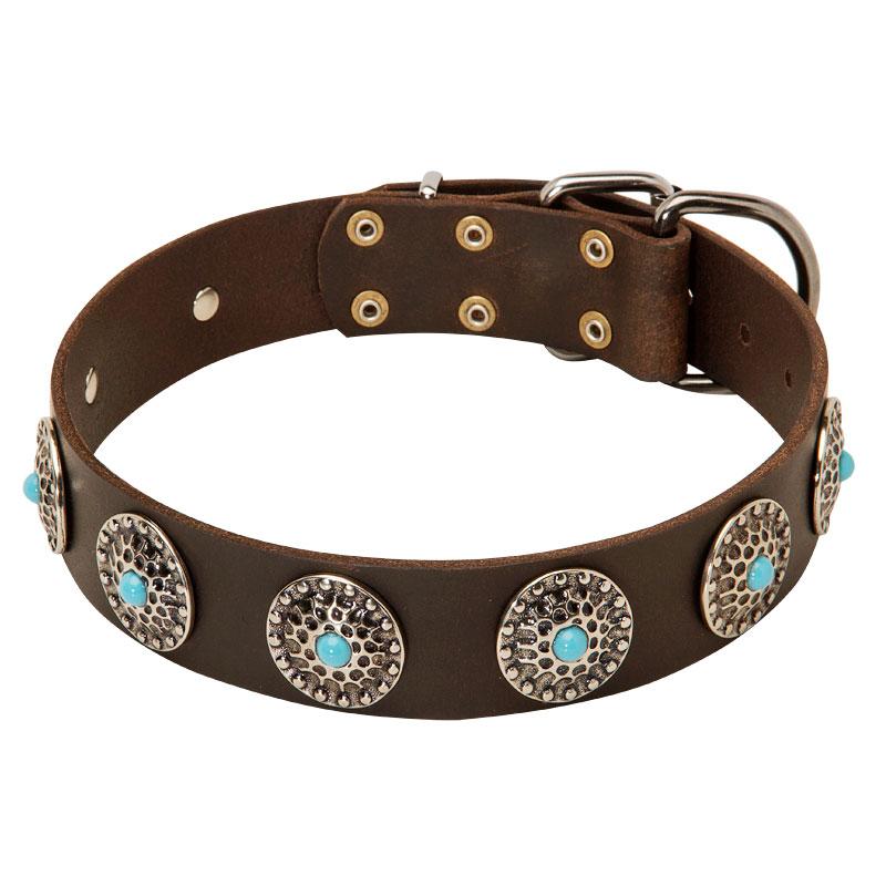 collier en cuir bijoux azur s pour le chien cane corso c75. Black Bedroom Furniture Sets. Home Design Ideas