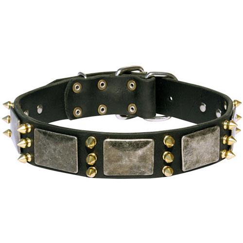 collier en cuir garni de diff rents rivets pour rottweiler. Black Bedroom Furniture Sets. Home Design Ideas
