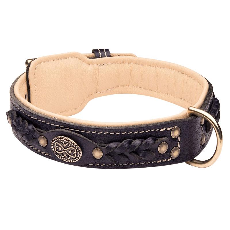 collier de fantaisie pour chien de race husky sib rien c43. Black Bedroom Furniture Sets. Home Design Ideas