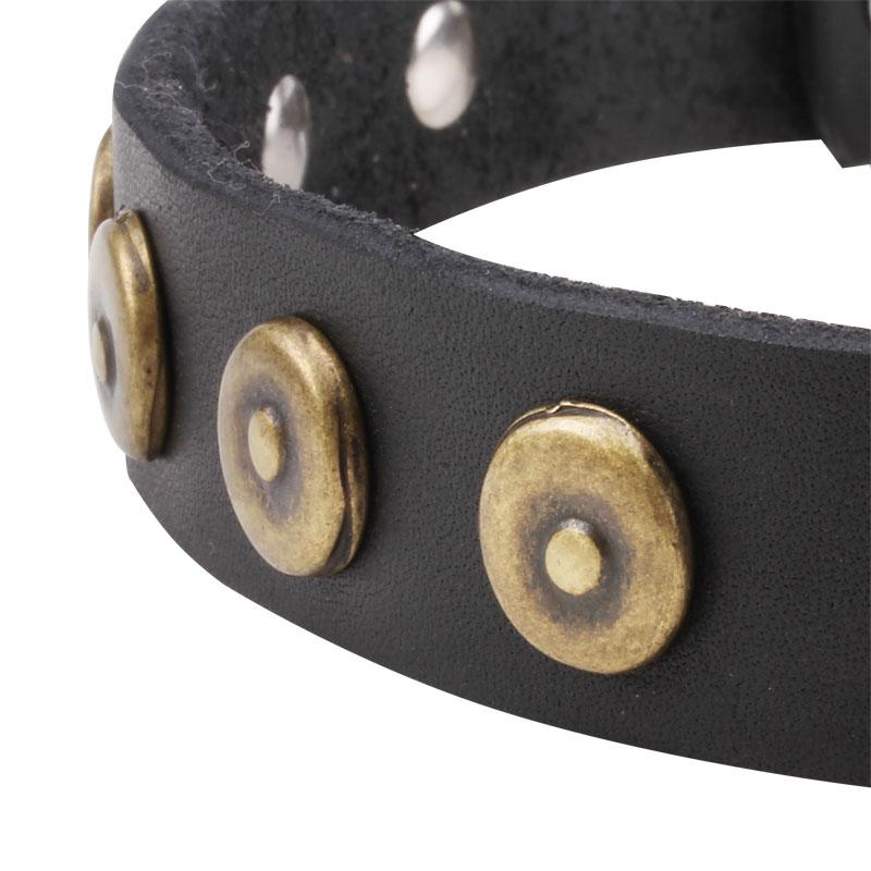 collier pour chien en cuir de design original s28. Black Bedroom Furniture Sets. Home Design Ideas